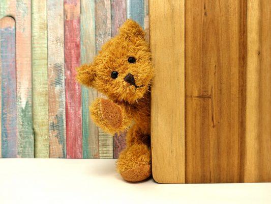 teddy-3405768_1920